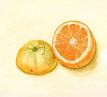 orange stilllife by Vanessa Pasqualetto