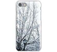 To Narnia! iPhone Case/Skin