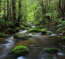 Verdant Valley by Donovan wilson