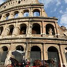 Horse and Carriage - Rome by Samantha Higgs