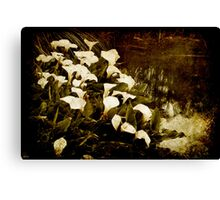 Consider the Lillies Canvas Print