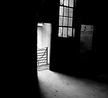 Step Into The Light by Shaun Colin Bell