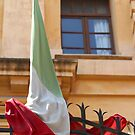 Tangled Flag by Samantha Higgs