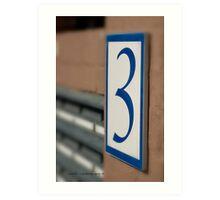 THREE  © Vicki Ferrari Photography Art Print