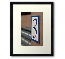 THREE  © Vicki Ferrari Photography Framed Print