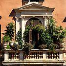 Balcony Garden - Italy by Samantha Higgs
