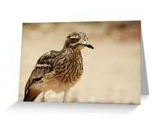 Who You Calling Thick Knee'd?? Greeting Card