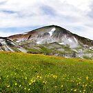 Mount Lakmos by Daphne Kotsiani