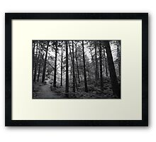St Catherines' Hill III Framed Print