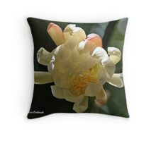 Open Your EyEs to LIGHT.. Throw Pillow