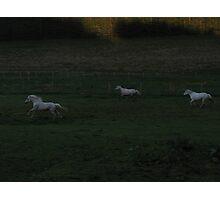 Spectres Photographic Print