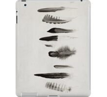Feather Study no. 3 iPad Case/Skin