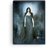Night Hunt Canvas Print