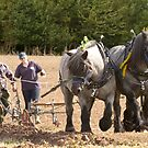 Ploughing the old way  by yampy