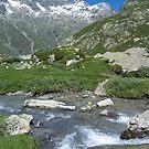 Macugnaga - Belvedere, Monte Rosa by jimmylu