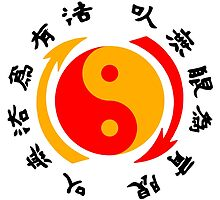 Yin Yang Jeet Kune Do by alee7spain