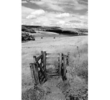 Please Shut The Gate Photographic Print