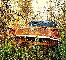 CHEVROLET in woods by bulldawgdude