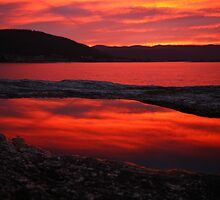 red pool. eastcoast, tasmania by tim buckley | bodhiimages