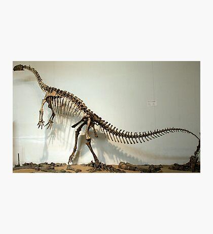 Special Riojasaurus Photographic Print