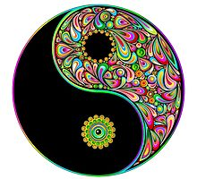 Yin Yang Paisley by alee7spain