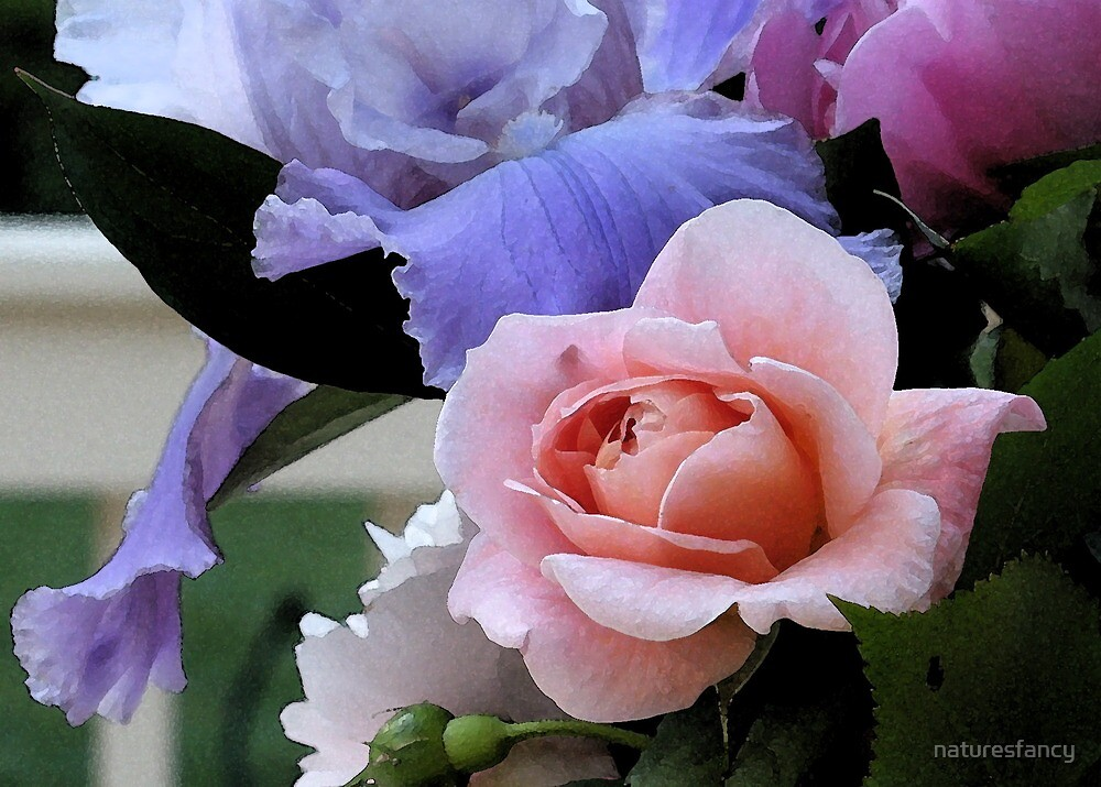 Fabulous Pink Rose Floral Art  by naturesfancy