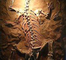 Strong Riojasaurus by skeletonsrus