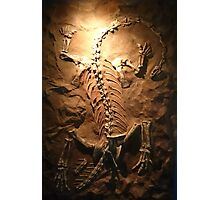 Strong Riojasaurus Photographic Print