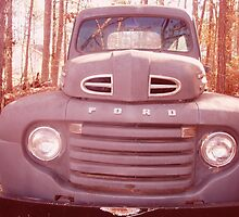 FORD TRUCK by bulldawgdude