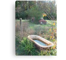 Bug , Bath & Beyond Canvas Print