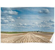 Wheat Farm in the Spring Poster