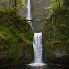 Multnomah Falls by algill