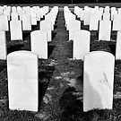 National Cemetary by Mellissa Xenakis