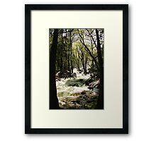 Trail to Bridal Veil Framed Print