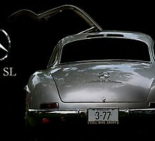 Gullwing by dlhedberg