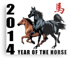 2014 Year of The Horse Metal Print