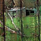 The Old Shed by Eve Parry