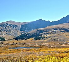 Colorado Fall Colors at Mountain Lake near Georgetown by Amy McDaniel