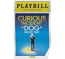 Playbill for Curious Incident of the Dog in the Night time Poster