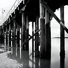 Urangan Pier by Kym Howard