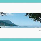 Hanalei Panorama by James Pollard