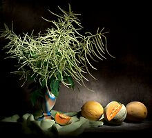 Mysterious Astilbe and Cantaloupe Still Life by Ondřej Smolka