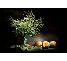 Mysterious Astilbe and Cantaloupe Still Life Photographic Print