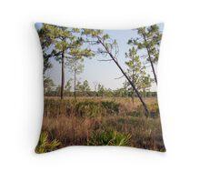 Florida Vista Throw Pillow