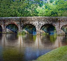 Withypool Bridge by Catherine Hamilton-Veal  ©
