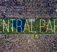 Central Park by northofparadise