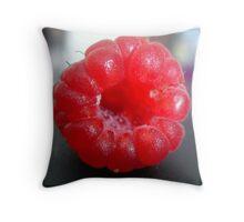 Raspberry Passion Throw Pillow