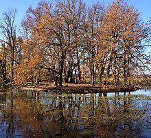 Winter on Lake Wendouree by Kristina K