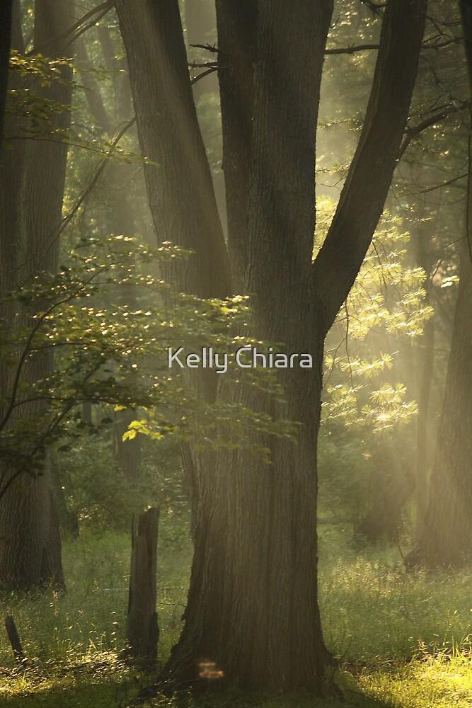 Shine Forth by Kelly Chiara