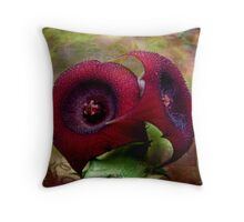 Succulent Star Fish Flower Throw Pillow